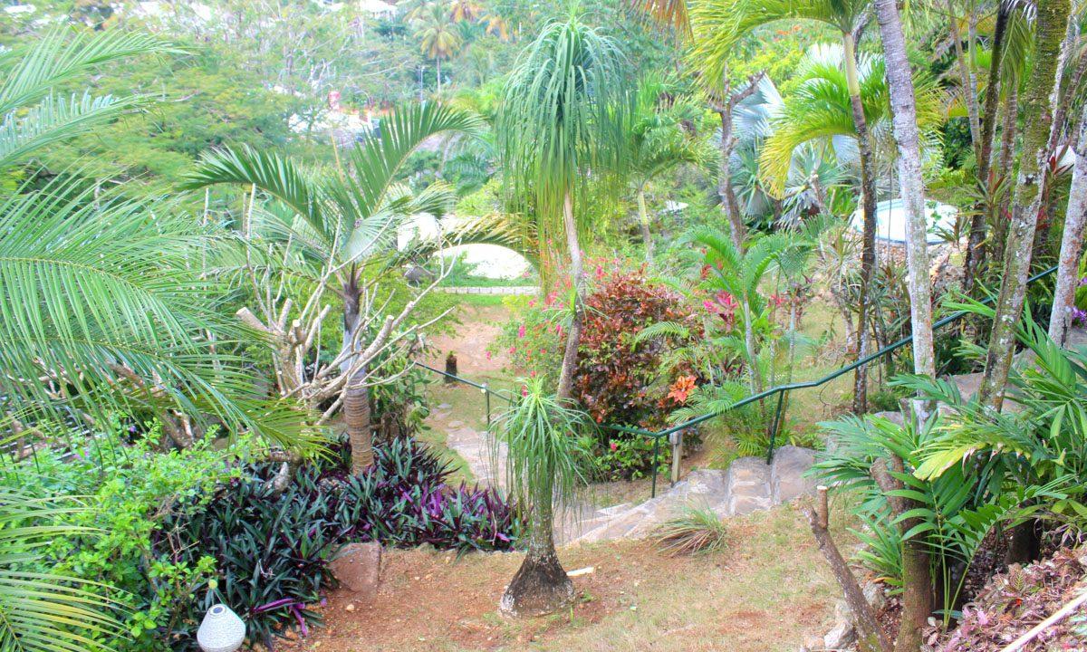 Miason Créole la Ceiba Las terrenas (16)